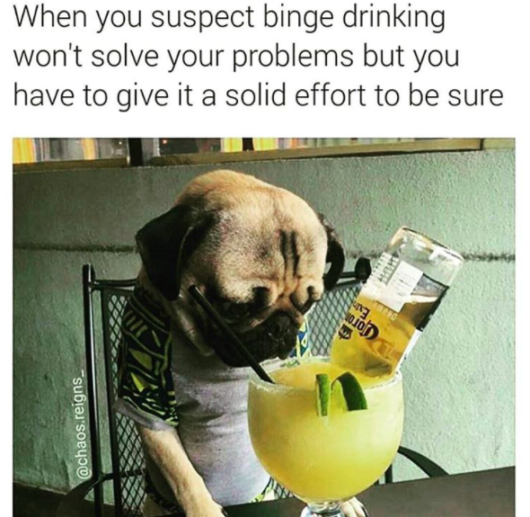 Cash And Go >> 28 Memes That Perfectly Describe Your Drunk Weekend