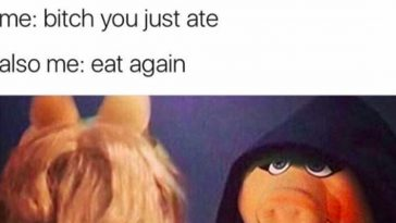 27 Of The Funniest Dark Kermit Memes On The Internet
